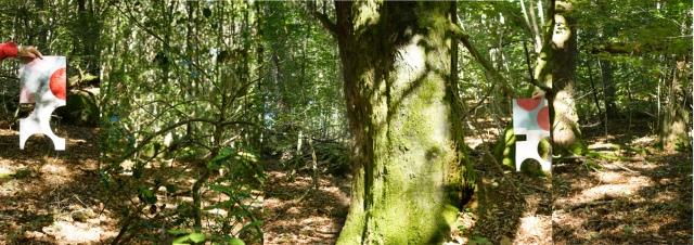 Woodland creuse 480